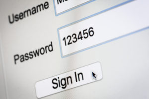 Password Sign In